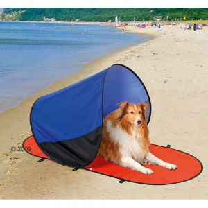 tent-hond