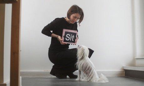 hond leert van ipad