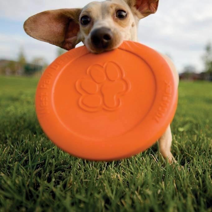 West Paw Hondenfrisbee - supersterk